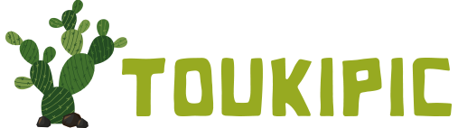 Toukipic